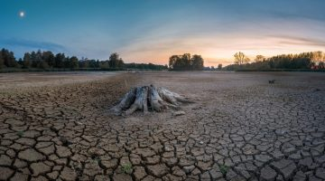 drought-3618665_1920